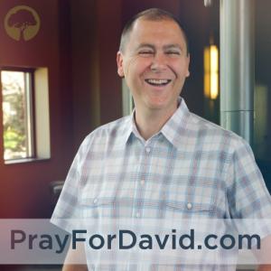 prayfordavid.com